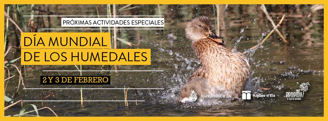 03-humedales-2019-1