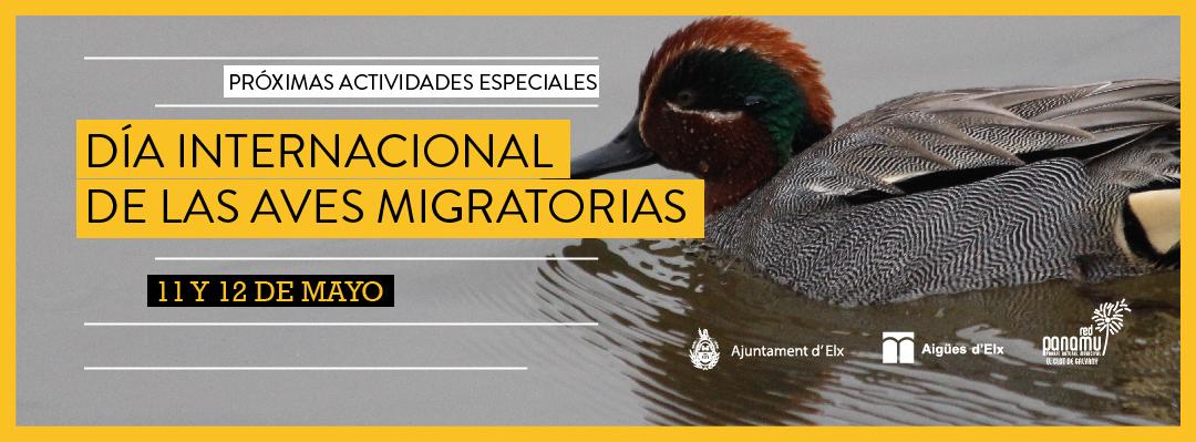 06-aves-migratorias-2019