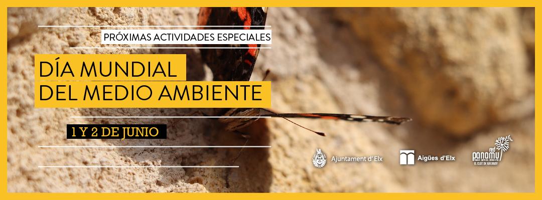 09-medio-ambiente-2019